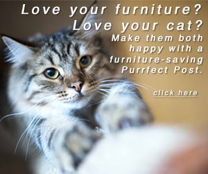 Love your furniture? Love your cat? Make them both happy with a furniture-saving Purrfect Post.