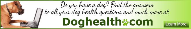 Dog Health have a dog