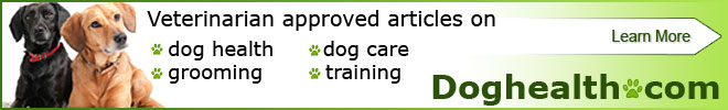 Veterinarian approved articles dog health