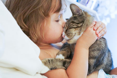 A few ground rules can keep your cat-kid household safe.