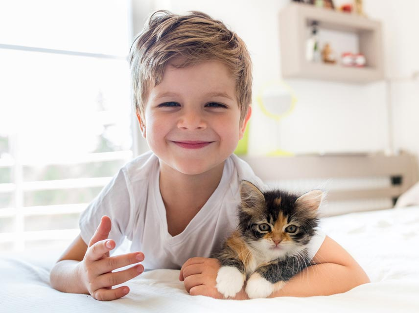 Image result for kids and cat